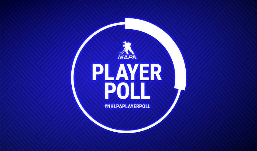 Results revealed for 2018-19 NHLPA Player Poll