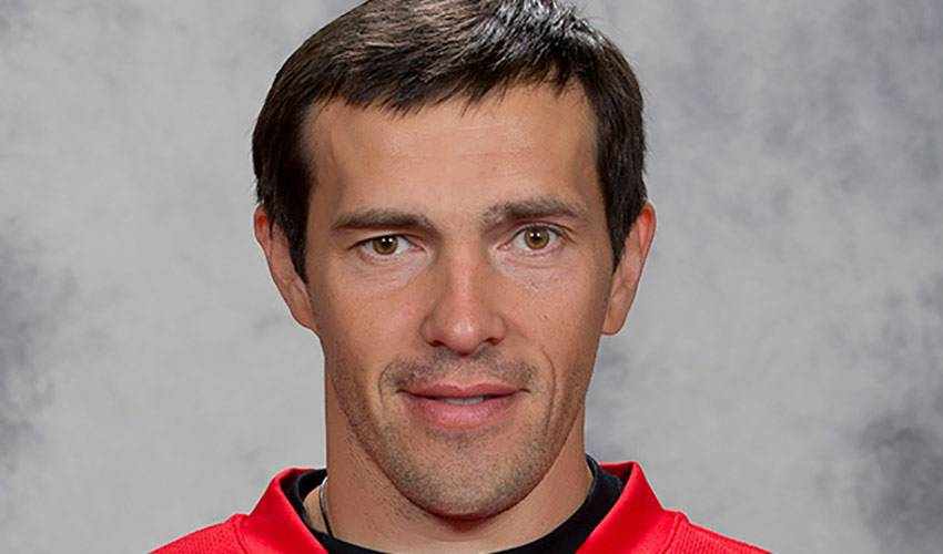 Pavel datsyuk player of the week nhlpa voltagebd Image collections