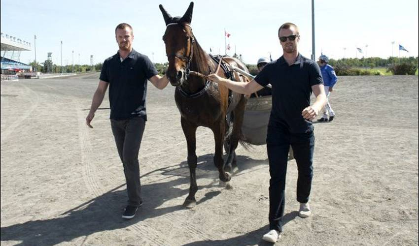 Sedin twins look to net hockey and horse racing gold